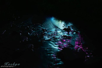 Masters Of Puppets - Water Reflection