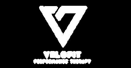 V-logo-white.png