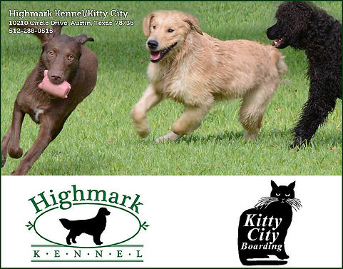 Highmark Kennel - Kitty City