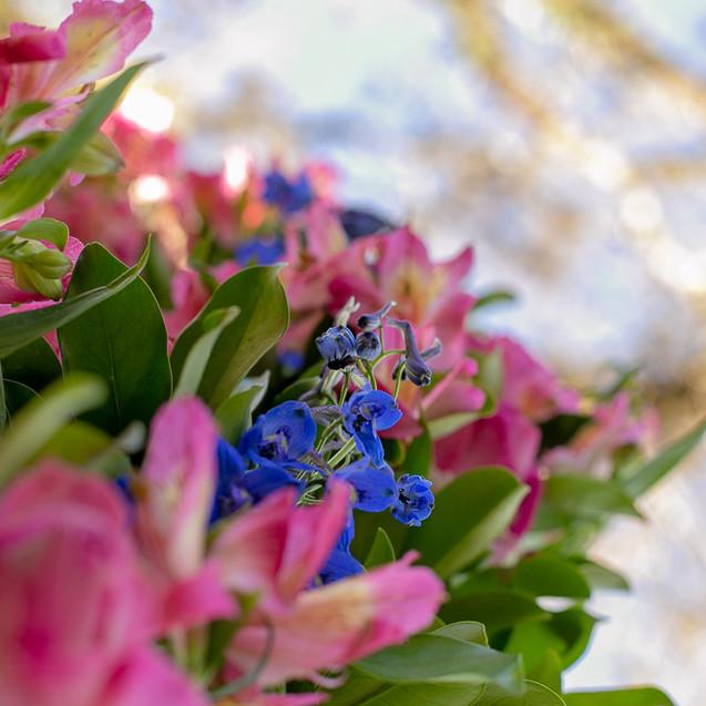 flores para casamento - quattrofotografias - rosa