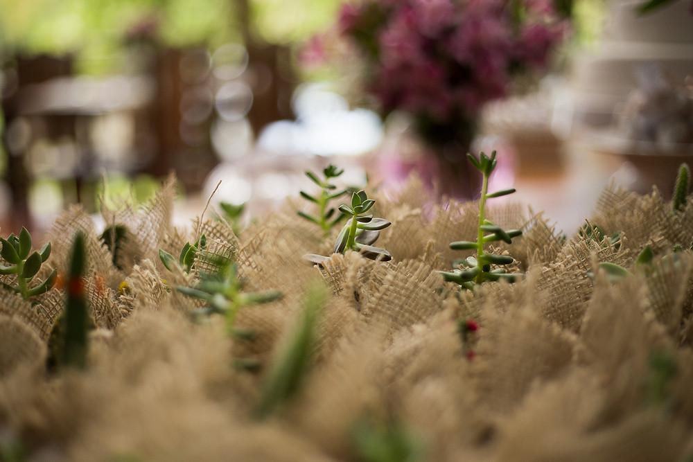 fotografo de casamento campinas, decoração, flores, primavera
