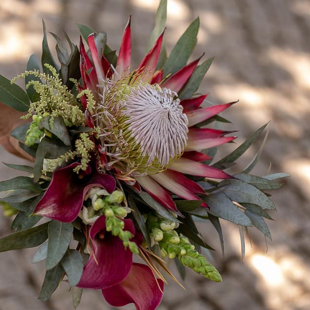 flores para casamento - protea - quattro fotografias