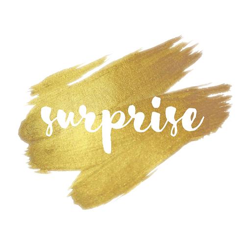 """SURPRISE  """"Deluxe"""""""