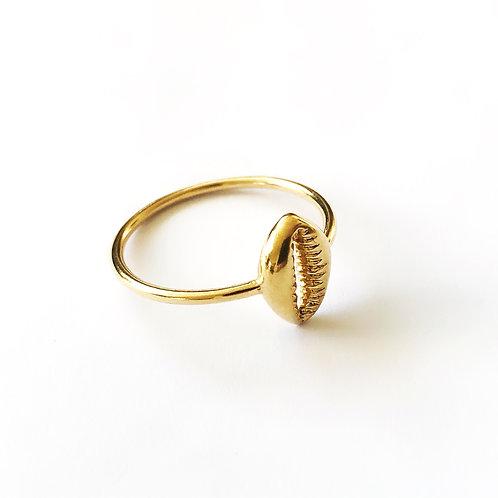 "Ring ""Kauri """