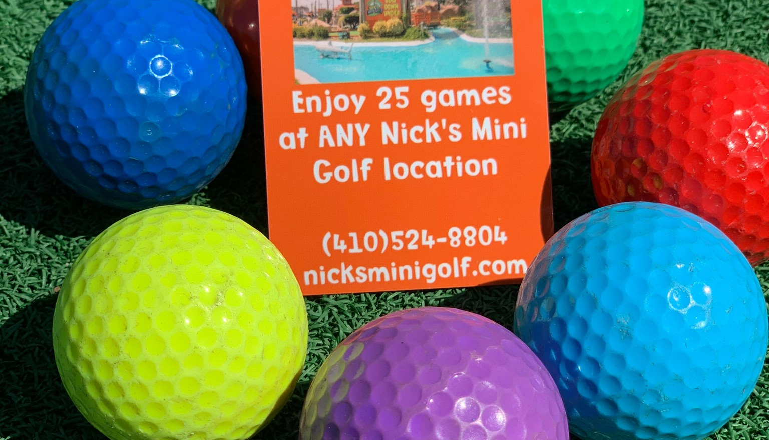 #3 Nick's Mini Golf Frequent Putter/Season Passes