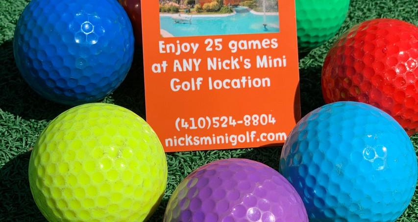 #3 Nick's Mini Golf Frequent Putter/Season Passes