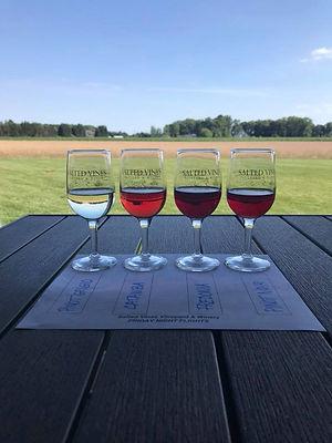 salted-vines-wine-delaware.jpg