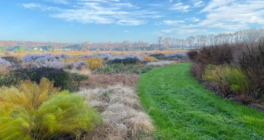 #8 Delaware Botanic Gardens Membership
