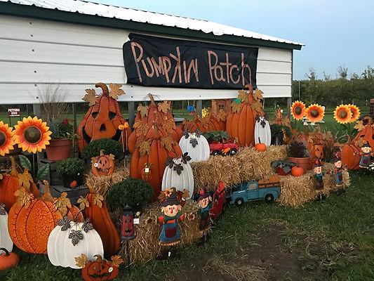pumpkin-patch-delaware-beach.jpg