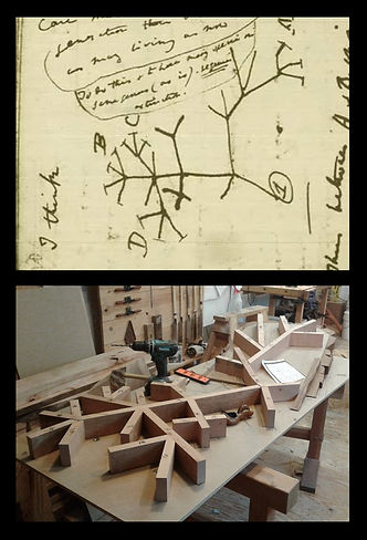 """The root system of the trees is based on Darwin's early thoughts on evolution. This is his first """"tree of life"""" sketch."""