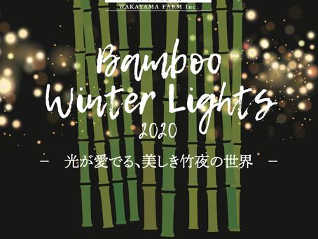 Bamboo Winter Lights 2020 がスタートします!