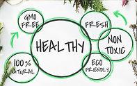 Health venn diagram