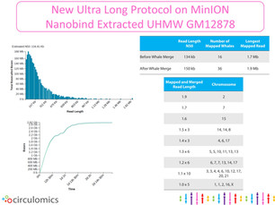 UHMW GM12878 Ultra Long Sequencing on ONT MinION