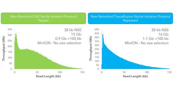 New Nanobind Plant Nuclei Isolation Protocols