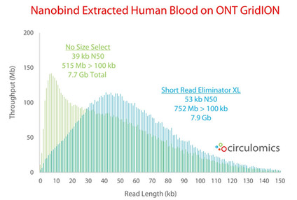 SRE XL Size Selection of Nanobind Extracted Human Blood on ONT MinION
