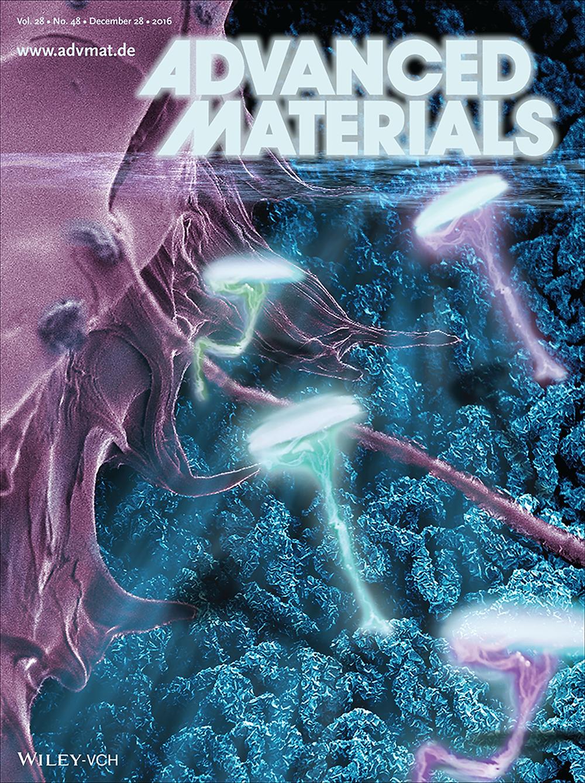 Nanobind Advanced Materials Cover