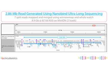 2.86 Mb Read Generated Using Nanobind Ultra Long Sequencing