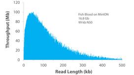 Nanobind Ultra Long on MinION - Fish Blood