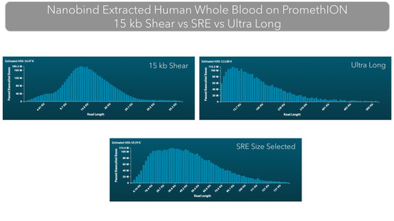 Human Blood Sequencing - Read Length Distribution