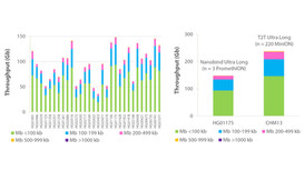 Nanobind Ultra Long Sequencing for Human Pangenome Reference Program