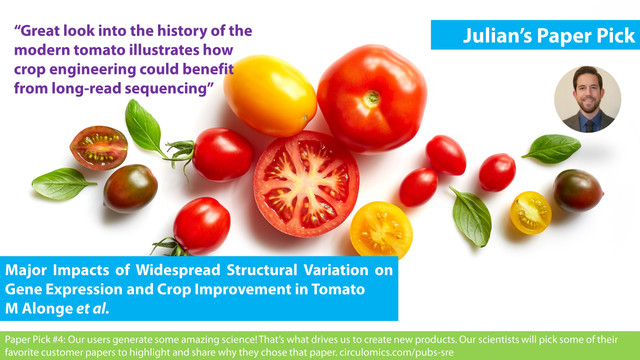 Major Impacts of Widespread Structural Variation on Gene Expression and Crop Improvement in Tomato