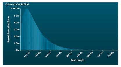 Nanobind Ultra Long on PromethION - HG02723