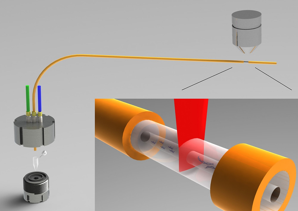 Single Molecule Free Solution Hydrodynamic Separation