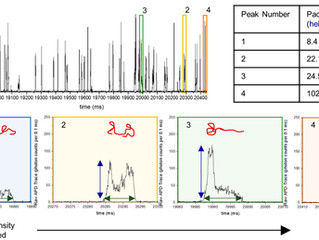 PicoSep Can Be Used to Determine Single Molecule DNA Conformation