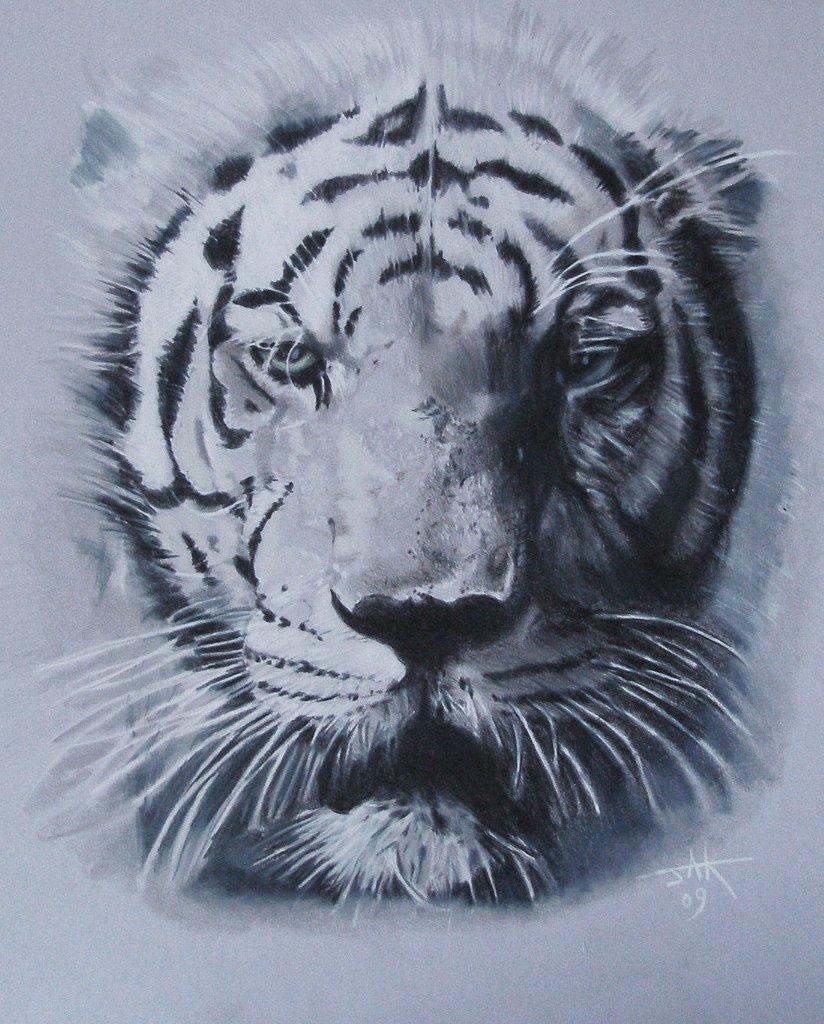 Last Tiger on Earth.JPG