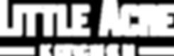 LOUNGE white Transparent logo little acr
