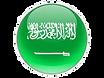 Saudi%20round%20flag_edited.png