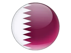 qatar round flag_edited_edited.png