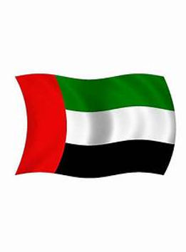 Flag of UAE.jpg