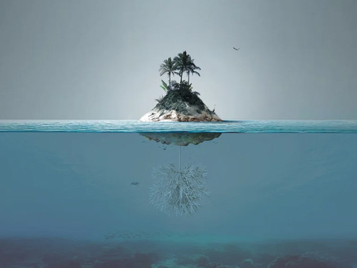 Ένα τεχνητό νησί για τη συλλογή μικροπλαστικών και την προστασία της θαλάσσιας ζωής.