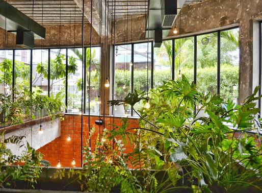 Τα ξενοδοχεία ανακαλύπτουν Biophilic Design