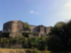 Château_de_Rieux-Minervois_.jpg