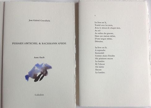 Livre peint JG Cosculluela A.Slacik 2.jp
