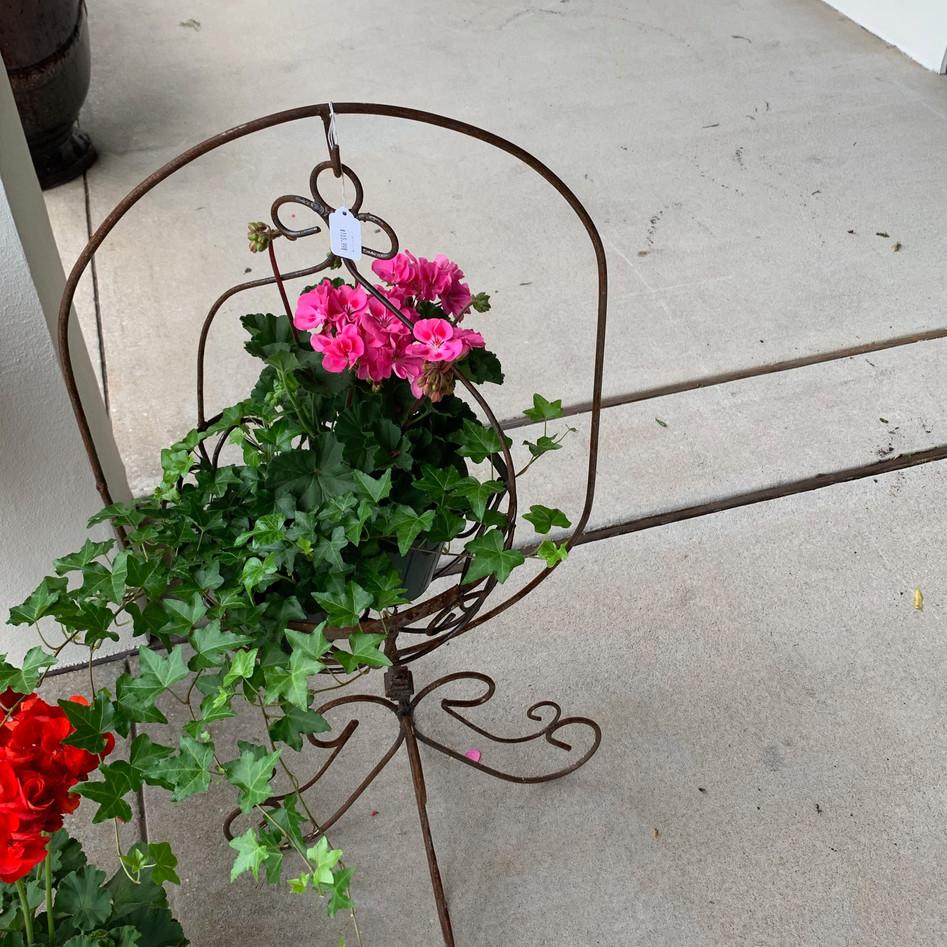 Ivy Hanging Basket Stand