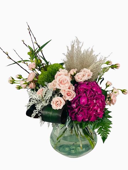 Hortensia, pampa, mini rosas, uña de gato