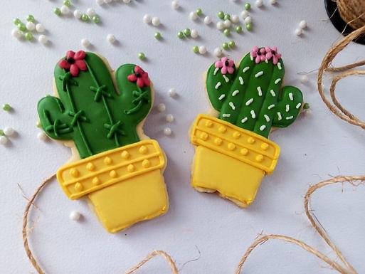 Galleta Cactus