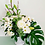 Thumbnail: Margaritas, rosas, monstera, lilys.