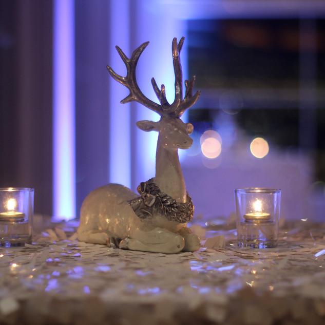 3.white deer.jpg