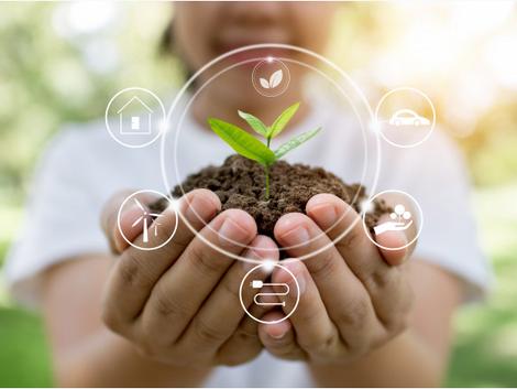 Questões ambientais e agenda 2030