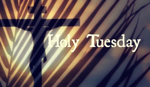 Holy Tuesday:  Calm During Increasing Conflicts