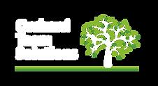 OTS Logo White.png