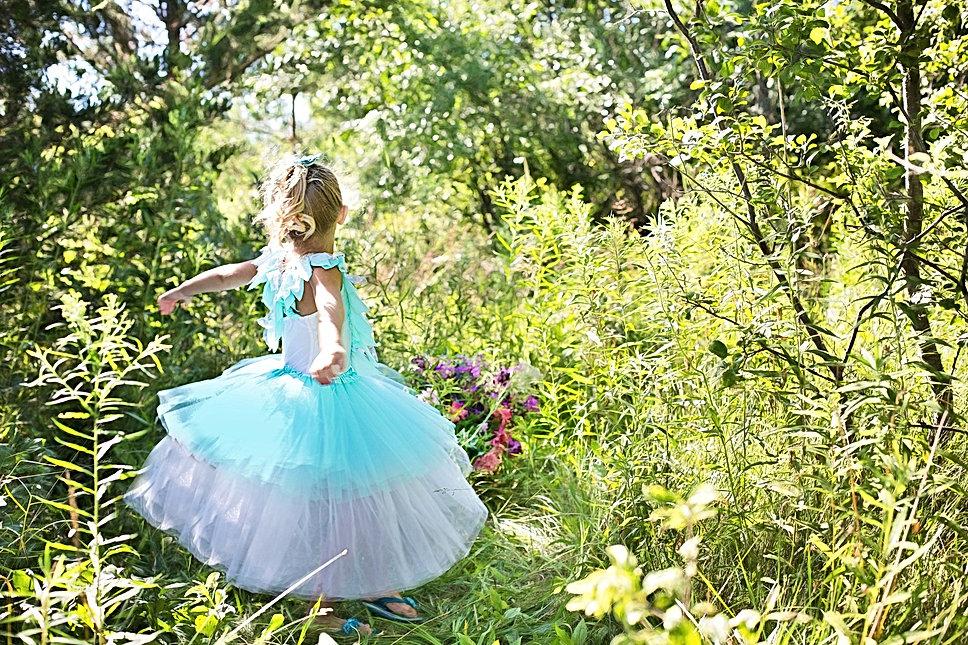 princess-869722_1920.jpg