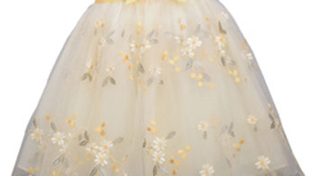 Infant embroidered tulle dress