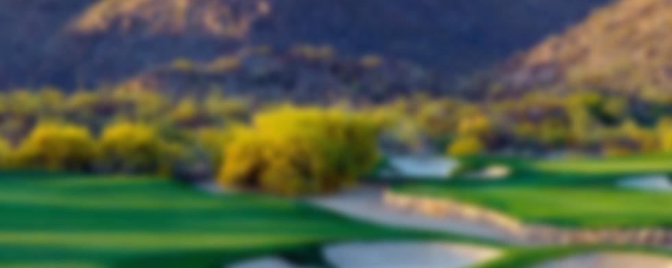 1-about-golf-guru-blur.jpg