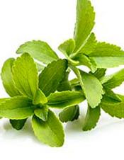 4-stevia.jpg