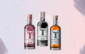 Glendalough Distillery-Products.png